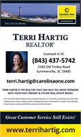 Carolina One Real Estate - Terri Hartig