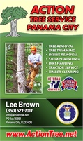 Action Tree Service - Panama City
