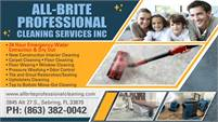 All-Brite Pro Carpet Cleaning