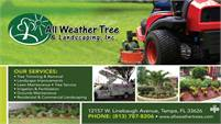 All Weather Trees & Landscaping Inc