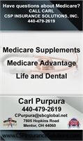 CSP Insurance Solutions Inc - Carl Purpura