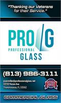Professional Glass
