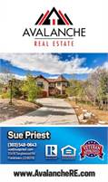 Avalanche Real Estate LLC Sue Priest
