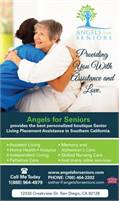 Angels for Seniors